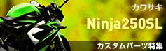 Ninja250SLカスタムパーツ特集