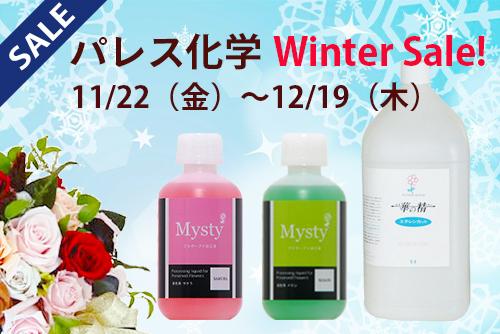 パレス化学 Winter SALE!
