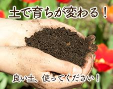 土で育ちが変わる