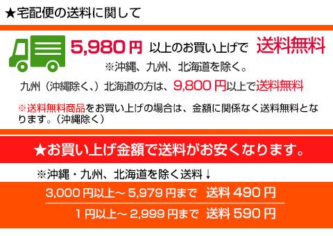 5,980円以上のお買い上げで送料無料