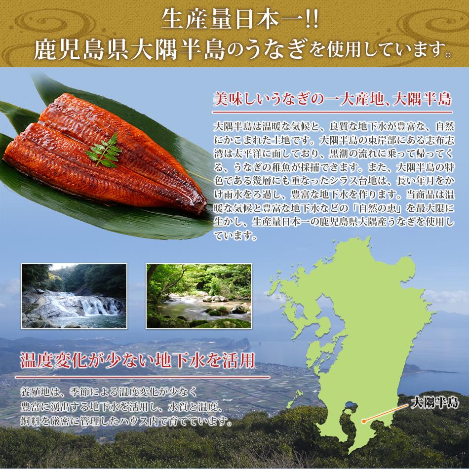 生産量日本一!!鹿児島県大隅半島のうなぎを使用しています。