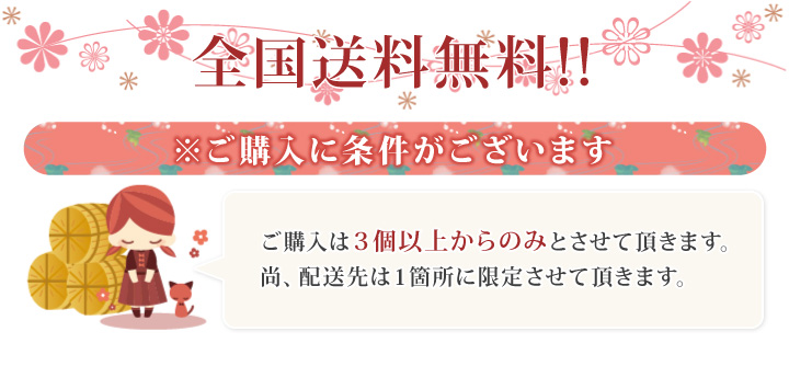 楽天市場OPEN記念 全国送料無料!!