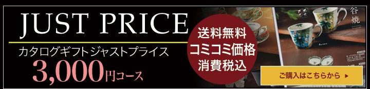 ジャストプライス 3,000円コース カタログギフト 内祝 グルメ