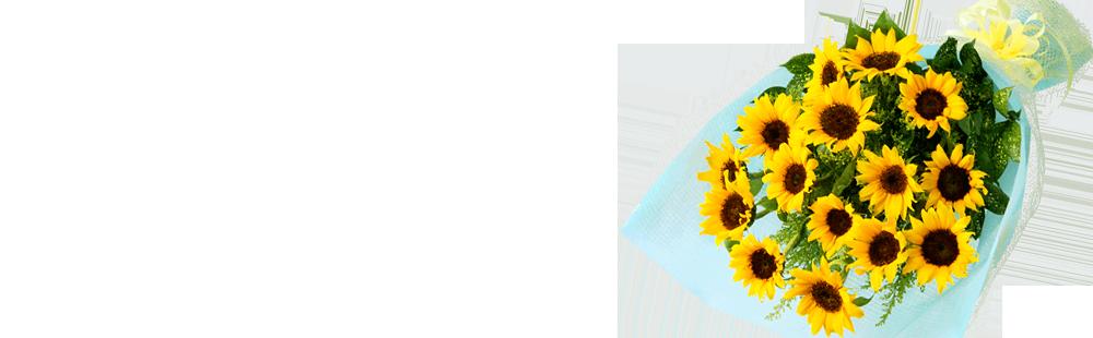 花キューピットのひまわり特集ギフト特集