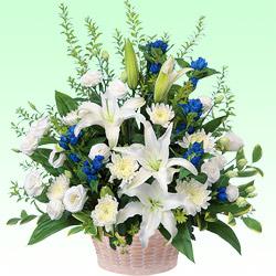 お供えのアレンジメント 511233 |花キューピットの2019 お盆(新盆・初盆)