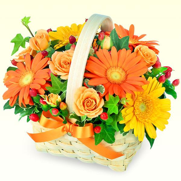 511335 511335 |秋のお祝いにおすすめ!人気のプレゼント特集 2018