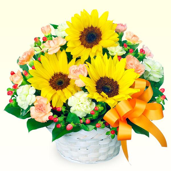 ひまわりのアレンジメント 511376 |ひまわり特集特集:花キューピットおすすめフラワーギフト!