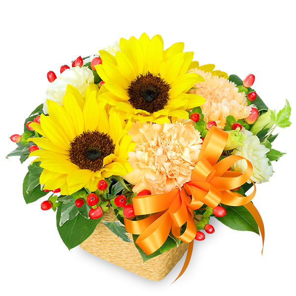 ひまわりのオレンジリボンアレンジメント 511386 |ひまわり特集特集:花キューピットおすすめフラワーギフト!