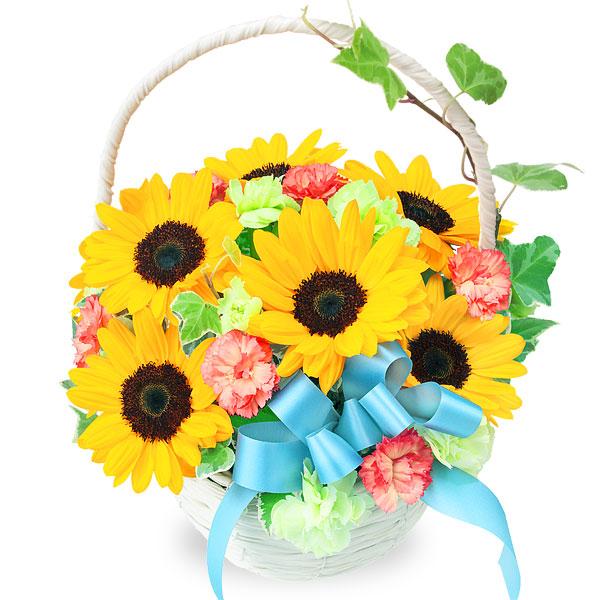 ひまわりのリボンバスケット 511963 |花キューピットの2019父の日プレゼント特集