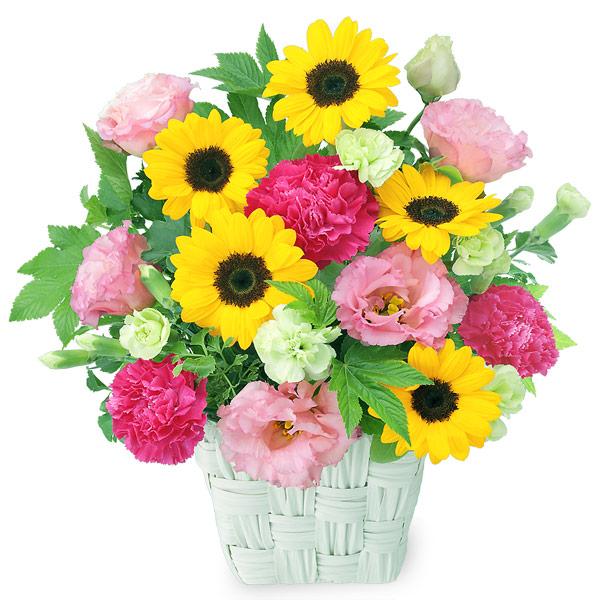 ひまわりの鮮やかアレンジメント 511986 |花キューピットのひまわりギフト特集2019