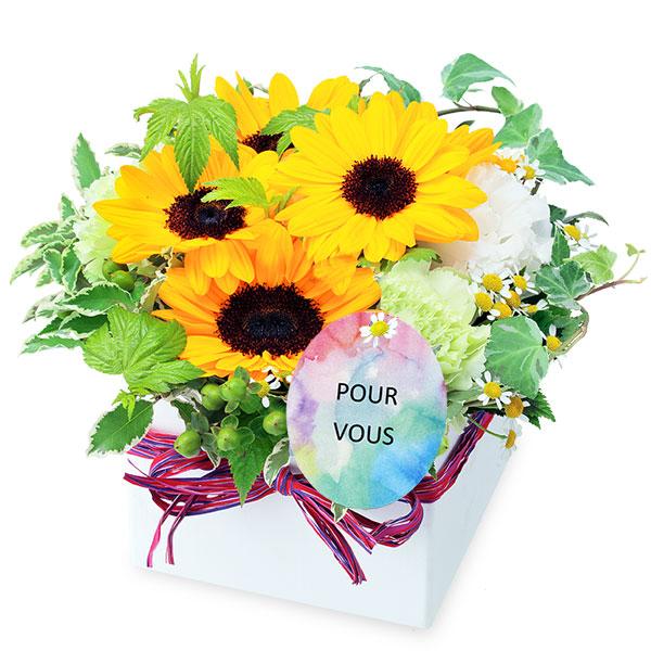 ひまわりのキューブアレンジメント 511990 |花キューピットの2019父の日プレゼント特集