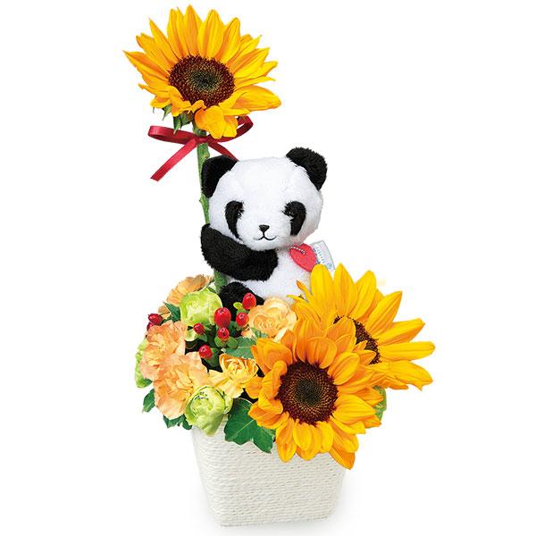 ひまわりのマスコット付きアレンジメント(パンダ) 511994 |花キューピットのひまわりギフト特集2019