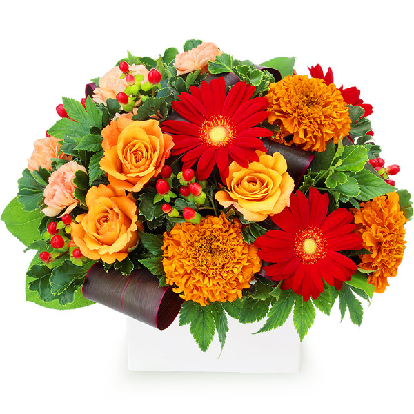 【秋の結婚記念日】オレンジバラと赤ガーベラのアレンジメント 512038 |花キューピットの秋の花贈りプレゼント特集2019