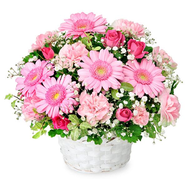 【秋の結婚記念日】ピンクガーベラのアレンジメント 512065 |花キューピットの秋の花贈りプレゼント特集2019