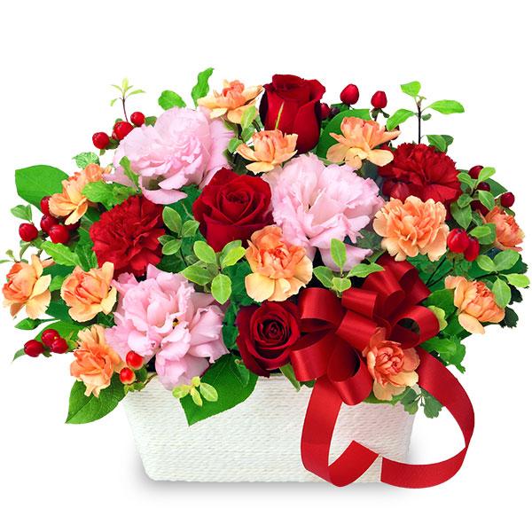 【母の日】赤バラとリボンのアレンジメント 512085 |花キューピットの母の日プレゼント特集2020