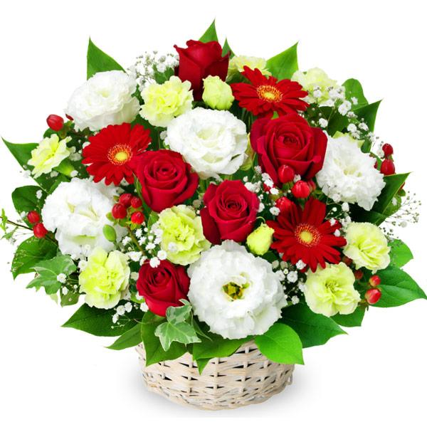 【秋の結婚記念日】赤バラと赤ガーベラのアレンジメント 512111 |花キューピットの秋の花贈りプレゼント特集2019