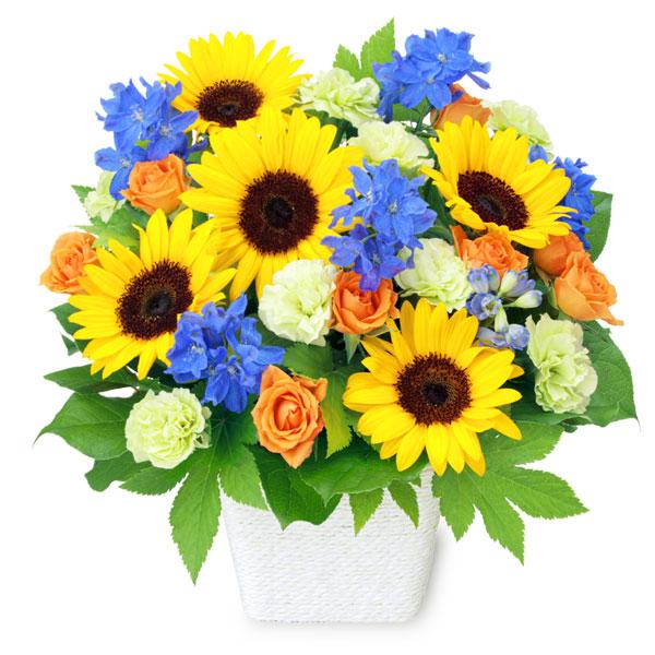 【父の日】お父さんありがとうアレンジメント 512213 |花キューピットの父の日プレゼント特集2020