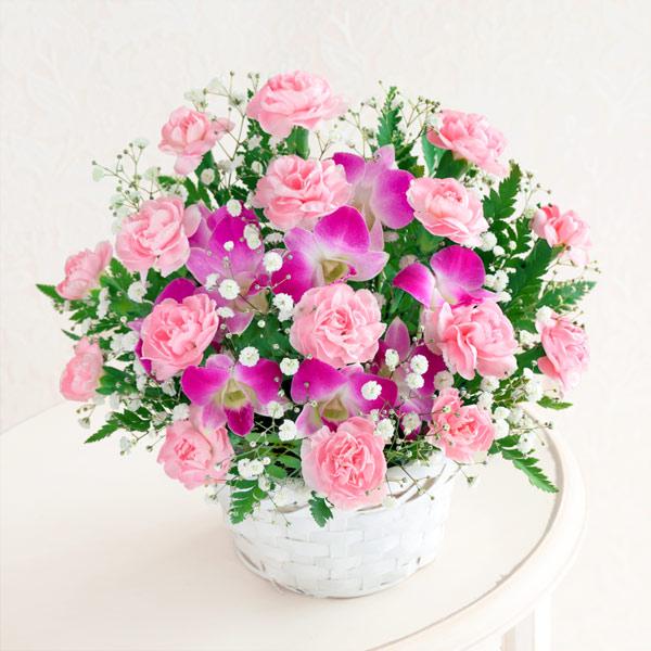 スイート 521252 |花キューピットの2019母の日フラワー特集