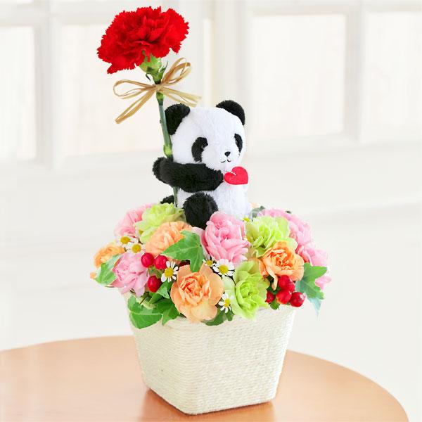 パンダのアレンジメント 521281 |花キューピットの2019母の日プレゼント特集