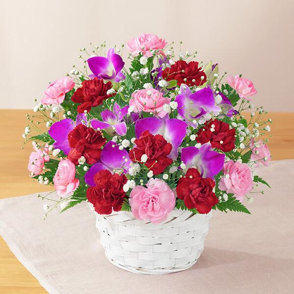 カーネーションと赤リボンのバスケット 521282 |花キューピットの2019母の日プレゼント特集