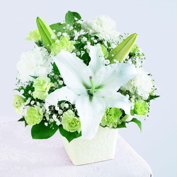 フォーエバーママ 521286 |花キューピットの2019母の日フラワー特集