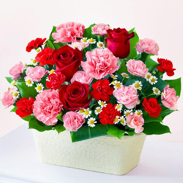 赤バラとカーネーションのバスケット 613243 |花キューピットの2019母の日フラワー特集