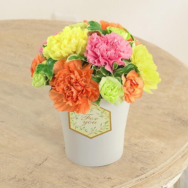 【母の日】グラマラス(カラフル) 613258 |花キューピットの母の日プレゼント特集2021