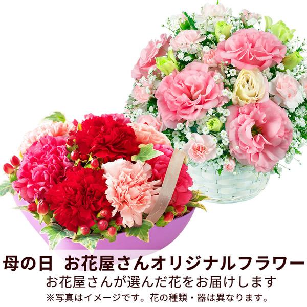 【おすすめ】アレンジ map003 |花キューピットの2019母の日フラワー特集