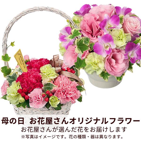 【おすすめ】アレンジ map004 |花キューピットの2019母の日フラワー特集