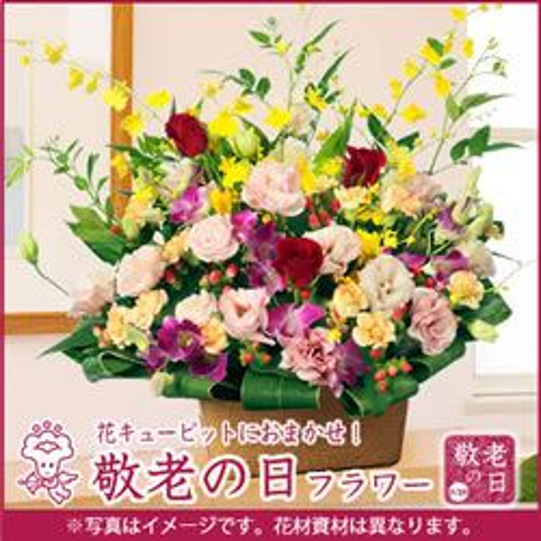 【おまかせ】 アレンジ map005 |敬老の日プレゼント・ギフト特集