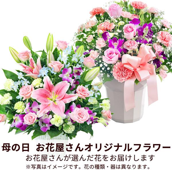 【おすすめ】アレンジ map008 |花キューピットの2019母の日フラワー特集
