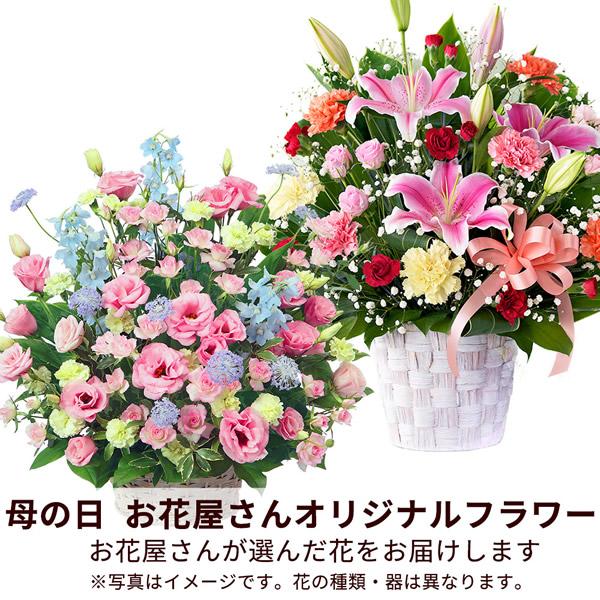 【おすすめ】アレンジ map010 |花キューピットの2019母の日フラワー特集