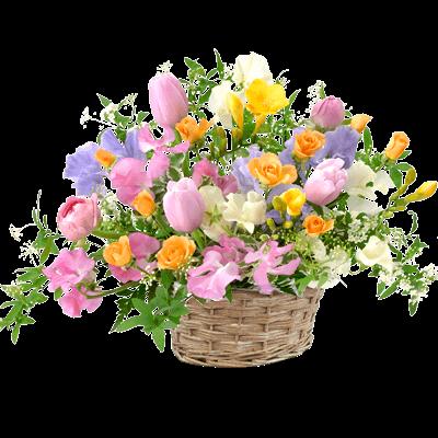 迷ったらこちら!おすすめランキング|春のお祝いプレゼント特集2019