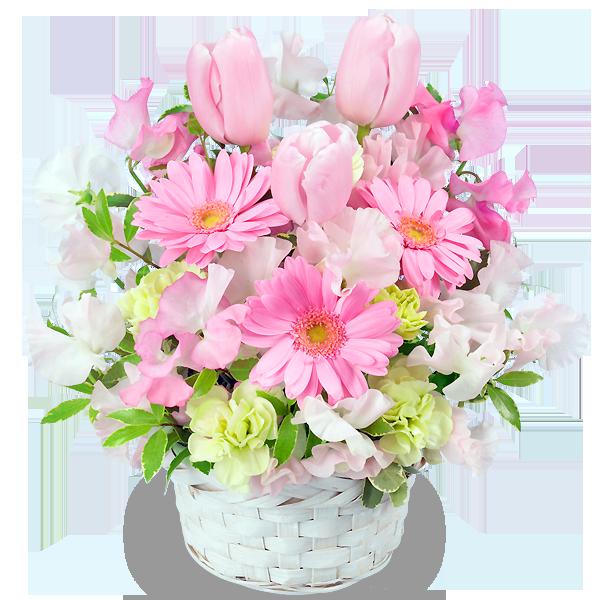 フラワーバレンタインのギフト 女性に人気な春の花|フラワーバレンタイン 2019