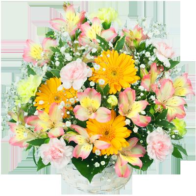 色とりどりの春の花 春の誕生日ギフト |春のお祝いプレゼント特集2019