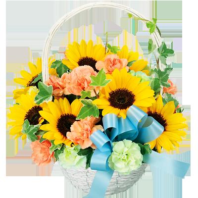 フラワーランキング|ひまわり特集|花キューピットおすすめの季節のフラワーギフト