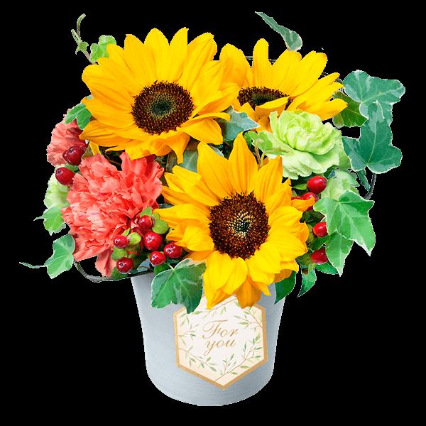一途な花言葉と共に結婚記念日に贈る|花キューピットのひまわりギフトおすすめギフト 2019