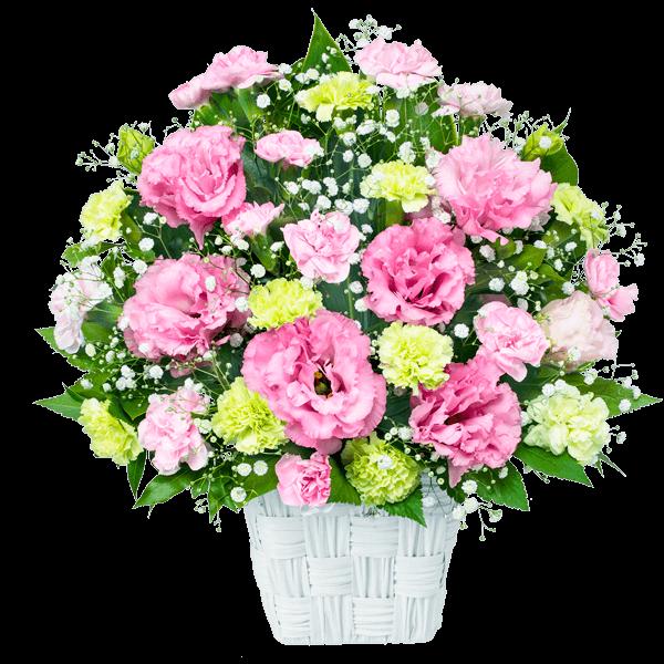 8月の誕生花(トルコキキョウ等)