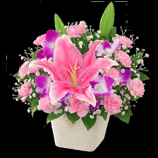 プレゼントに迷ったら お義母さんにおすすめ|花キューピットの母の日におすすめ!人気のプレゼント特集 2021