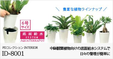 ID-8001 観葉植物 底面給水中鉢タイプ