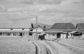 製粉、製麺所 (昭和35年頃)
