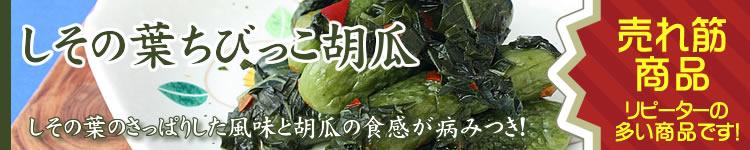 しその葉ちびっこ胡瓜