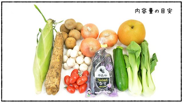 農家の台所 お試し野菜セット 内容例