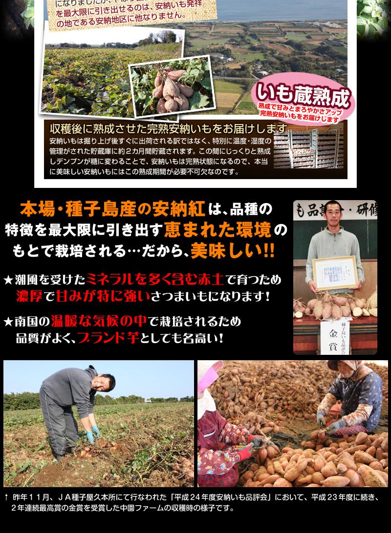 農家写真02