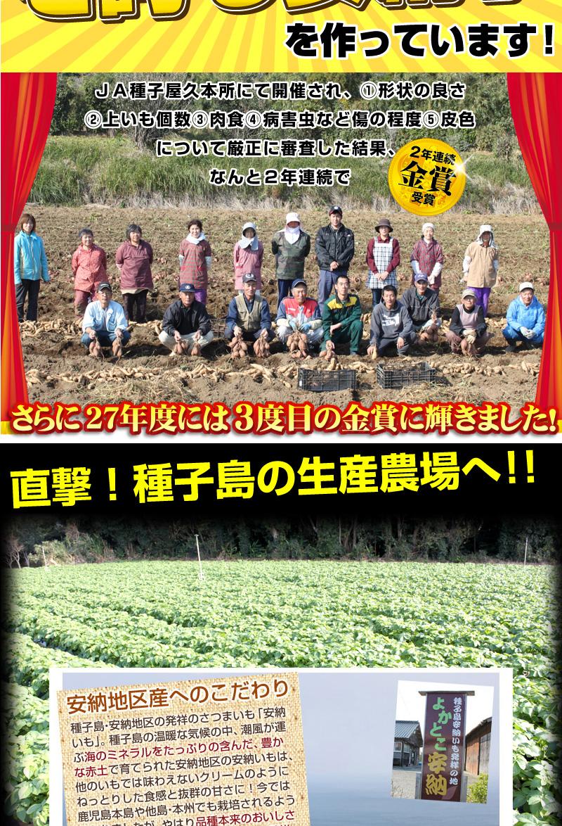 農家写真01