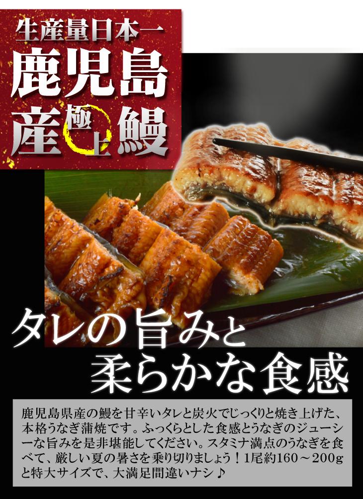 うなぎ蒲焼・国産