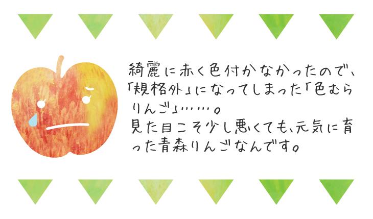 色むらふじ紹介02
