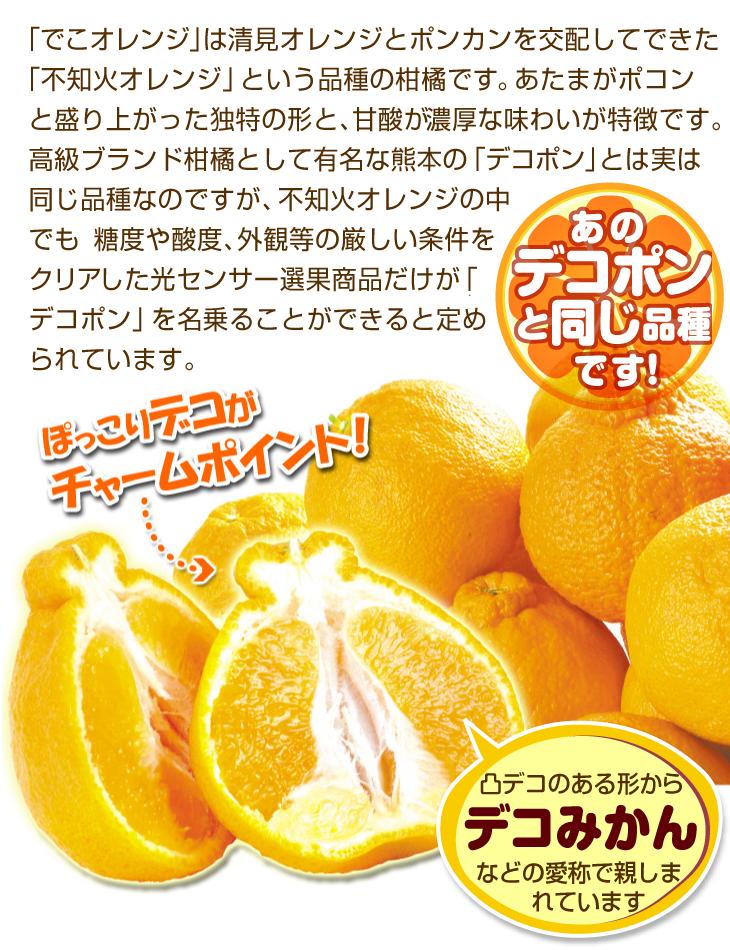 不知火オレンジ