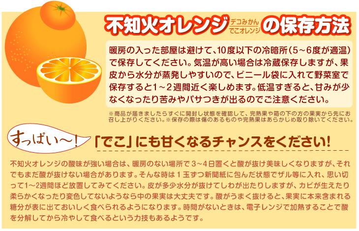 不知火オレンジ保存