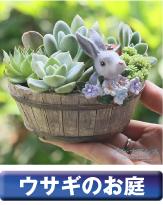 ウサギのお庭